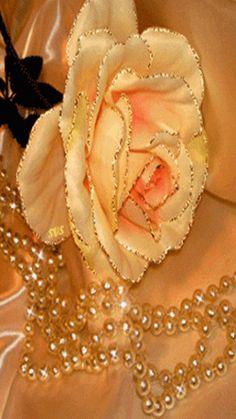 Beautiful Flowers Wallpapers, Beautiful Rose Flowers, Exotic Flowers, Amazing Flowers, Roses Gif, Flowers Gif, Morning Rose, Good Morning Flowers, Flower Phone Wallpaper