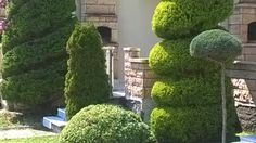 bahçe 16 04 2014