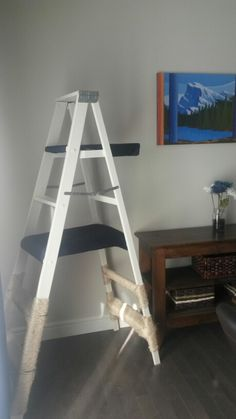 Home made cat tree - wooden ladder, paint, fabric, padding, sinsel, and a staple gun. Voila! The kittens LOVE it!