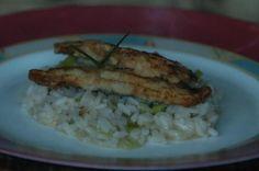 Filés de sardinha com risoto de alho-poró