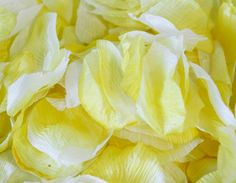 400 YELLOW TIP Silk Rose Petals  BUDGET by SpecialOcasionSupply, $5.75