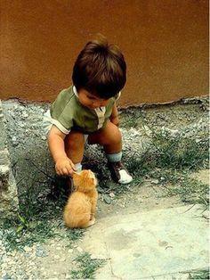 Freekibble Kids Love Animals Slideshow 1
