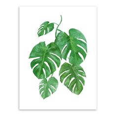 W07 Fresh Watercolor Tropical Plant leaves Canvas Art Print Poster, Wall Pictures for Home modern minimalist frameless paintings-in Painting & Calligraphy from Home & Garden on Aliexpress.com | Alibaba Group