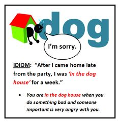 in the dog house #idiom #voc #ELT