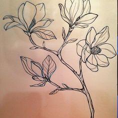 Magnolias design ✏️ #marialeontattoo #rbitattoo #nyc #eastvillage #flowers #magnolia #botanic #blackline Botanical Drawings, Botanical Art, Botanical Illustration, Asian Flowers, Rock Flowers, Tattoo Drawings, Art Drawings, Flower Tattoos, Line Art