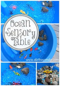 Ocean Sensory Table, Learn more about what lives in the sea! @Samantha @Stir the Wonder