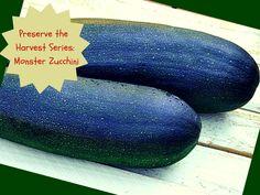 Preserve the Harvest Series: Monster Zucchini