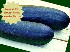 Preserve the Harvest Series: Monster Zucchini