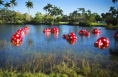 Right by the main entrance of Fairchild Tropical Botanic Garden near the hibiscus collection can be found these bright, wonderfully large cast gourd creations of Japanese artist,Yayoi Kusama. (Coral Gables, Florida)