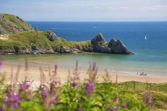 Photographic Print: Three Cliffs Bay, Gower, Wales, United Kingdom, Europe by Billy Stock : Shared by Motorcycle Fairings - Motocc Swansea Bay, Swansea Wales, Gower Peninsula, Uk Holidays, Camping Holidays, Pembrokeshire Coast, Camping Uk, South Wales, Wales Uk