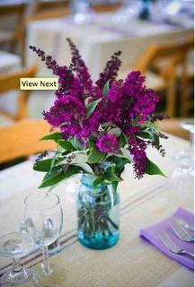 gorg purple flowers