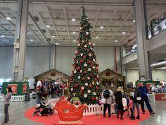 Christmas Tree, Holiday Decor, Home Decor, Culture, Teal Christmas Tree, Decoration Home, Room Decor, Xmas Trees, Christmas Trees