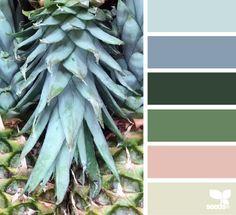 pineapple hues