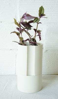 Ceramic Self-Watering Planter