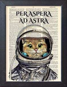 Cat astronaut in space suit Per aspera ad astra by Natalprint