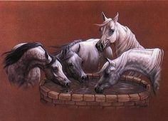 Four Beautiful Arabians Drinking at the Well. Arabian Art, Arabian Horses, Horse Sketch, Colored Pencil Artwork, Horse Artwork, Horse Drawings, Horse Sculpture, Equine Art, Pictures To Draw
