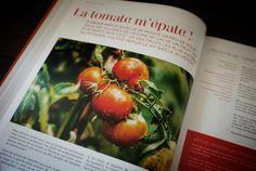 Niépi volume 2 . Eté 2014 Honest Tea, Sans Gluten, Blog, Vegetables, Bottle, Vegetable Gardening, Kitchens, Veggies, Flask
