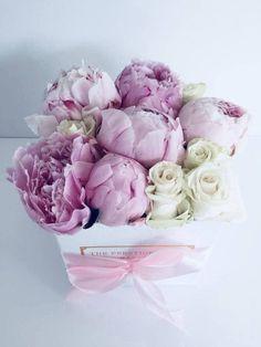 Comprar Peonias en Madrid - Floristeria Lujo de Caja de Rosas Madrid Madrid, Bts, Flowers, Plants, Shopping, Luxury, Crates, Plant, Royal Icing Flowers