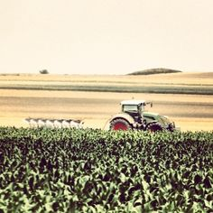 #agriculture #photography