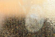 Spirit's Fingerprint: A Unique Way To Identify The Presence Of Your Spirit Guide — Amanda Linette Meder Richard Castle, Wd 40 Spray, Lifehacks, Questions To Ask, This Or That Questions, Identity In Christ, Hard Water Stains, Spirit World, Finding God