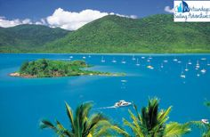Whitsundays is a great destination for all those who are looking to spend their holidays in the best possible manner.It has has almost everything that you would desire in a perfect holiday destination. The Adventure sports, sailing activities and scuba diving are trademark for sailing Whitsundays adventure.