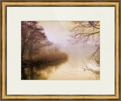 """""""Misty Morn"""" by Jessica Jenney, Bronxville, NY //  // Imagekind.com -- Buy stunning fine art prints, framed prints and canvas prints directly from independent working artists and photographers."""