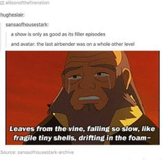 When you realize that this part of the filler episode's RIP moment was about saying goodbye to Uncle Iroh's original voice actor