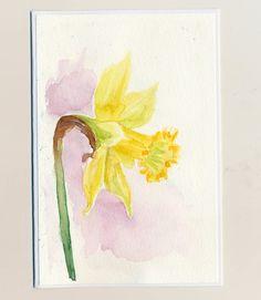 Ručne maľované pohľadnice - Narcisky - lubicabalentova.sk watercolor flower, doffodil