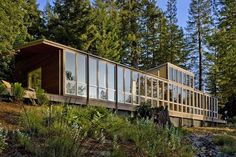 Modern ARchitecture Wooden House in the Forest