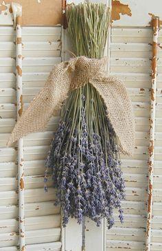 Dried Lavender Bouquet /  French Lavender Bunch / Rustic Wedding Decor / Barn Wedding Decor by roseflower48 on Etsy https://www.etsy.com/listing/156923142/dried-lavender-bouquet-french-lavender