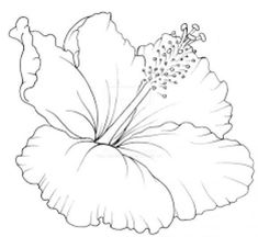 Sketches of flower tattoo designs best of unique tattoo designs art designs tattoo culture style gallery. Watercolor Flowers, Watercolor Art, Drawing Flowers, Line Drawing, Drawing Sketches, Colouring Pages, Coloring Books, Natur Tattoos, Flower Tattoo Designs