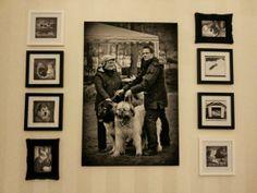 Rakkaat lemmikit  Our loved pets Caucasian ovcharka