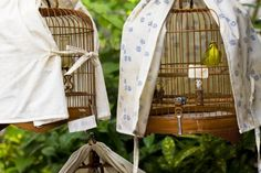 An article discussing why some bird owners opt to cover their bird's cages at night, whether or not it is necessary, and the importance of sleep to parrots and other birds.