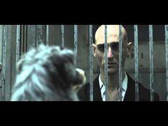 "Spot SPA ""En Cage"" : N'abandonnez pas ! New video of the SPCA France -- ""Don't abandon"""