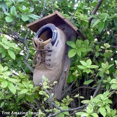 Have you ever seen a birdhouse made out of an old work boot?