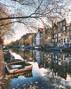 Amsterdam, Netherlands photo credit @mehmetsert
