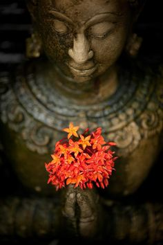 Buddha with blossoms