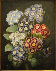 A Bouquet of Auriculas by Pierre Joseph Redoute, dated watercolor on vellum - National Gallery of Art, Washington, DC, USA. Art Floral, Flower Images, Flower Art, Joseph, Primroses, National Gallery Of Art, Floral Illustrations, Botanical Prints, Oeuvre D'art