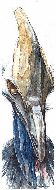 this is not a pterodactyl...... by Jennifer Kraska, via Flickr