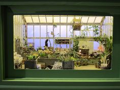 1/12th scale Harry Potter inspired greenhouse at the Philadelphia flower show, made by Louise Krasniewicz