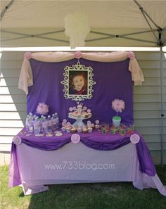 Sofia the first table setting