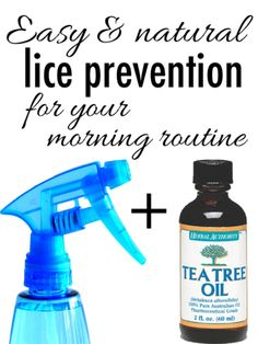 Worried your child will come home with lice? Here's an easy solution!