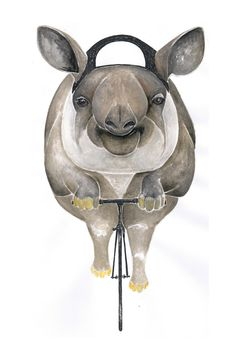 Poster / Tapir / Art Print : Animal on Bike Rhino Art, Large Letters, Cycling Art, To My Daughter, How To Draw Hands, Illustration Art, Art Prints, Drawings, Artwork