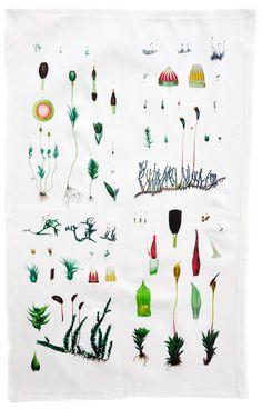 Botanical Moss Tea Towel / #LEIFgiftygiveaway