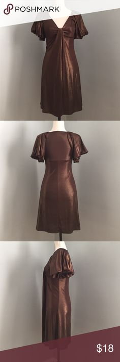Double Zero Dress 🦃🎉Sale🎉🦃 Shimmering brown dress • Puff cap sleeves • Plunging V neck • Empire waist line ✅Bundle discount available 🚫Trade Thank you 💖🐷💖 Double Zero Dresses Mini