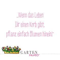 Flower Quotes, Positive Vibes, Hand Lettering, Positivity, Journal, Angst, Humor, Rat, Garden