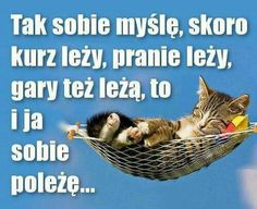 Wszystko leży;) Funny Lyrics, Weekend Humor, Happy Photos, Happy Campers, Man Humor, Motto, Funny Animals, Quotations, Haha