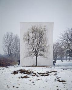 """Tree,"" South Korean photographer Myoung Ho Lee"