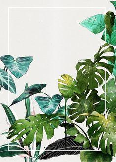 Plant Painting, Plant Drawing, Mural Painting, Mural Art, Wall Art, Watercolor Plants, Watercolor Paintings, Graffiti, Tropical Art
