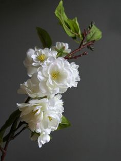 White single artificial cherry blossom branch from Rockett St George.  This beautifully realistic cherry blossom branch features various flower clusters and foliage.  Use one as a simple center piece or combine a few together for something a little more dramatic. - Please note: price is for one branch only